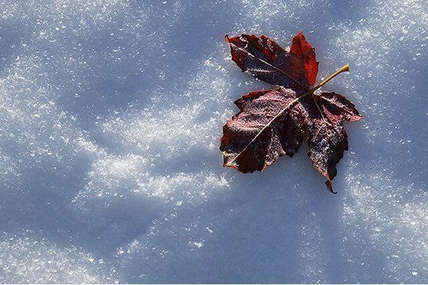هوای سرد و یخبندان تا روز سه شنبه ادامه دارد