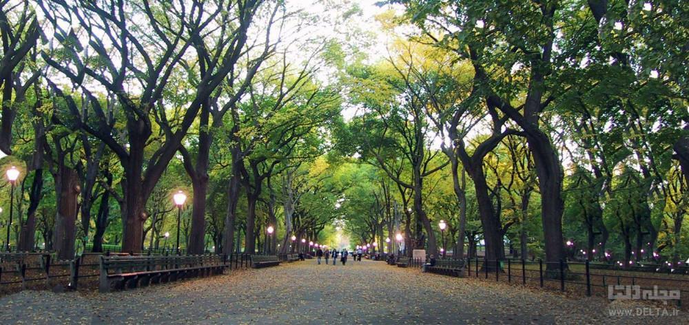 پارک شهر تهران ، کهن ترین بوستان پایتخت