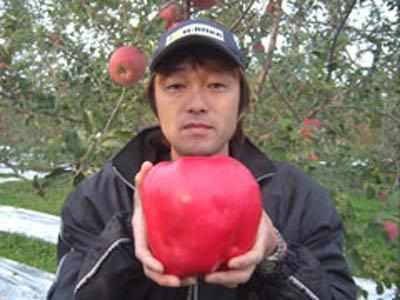 بزرگ ترین سیب جهان در دستان این مرد!
